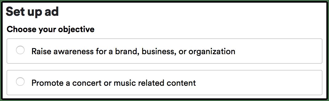 Spotify ad setup